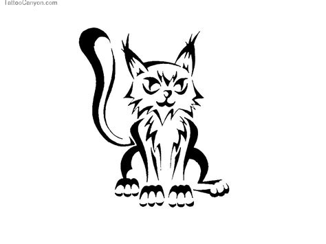 wallpaper cat tattoo funny cat tattoo 17 desktop background funnypicture org