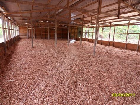 chicken layers house design layers chicken house with pics of inside chicken coops 12178 chicken coop design ideas