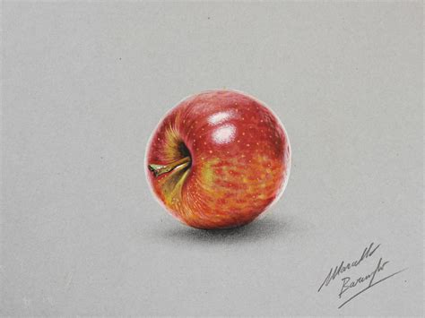 apple drawing apple drawing by marcello barenghi by marcellobarenghi on