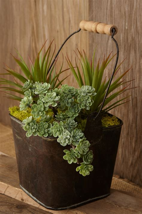 succulent arrangements fill your home with glamorous simple diy succulent