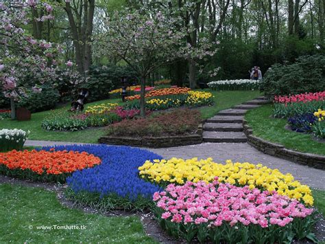 Keukenhof Flower Gardens Keukenhof Flower Garden A Kingdom Of Tulips Youramazingplaces