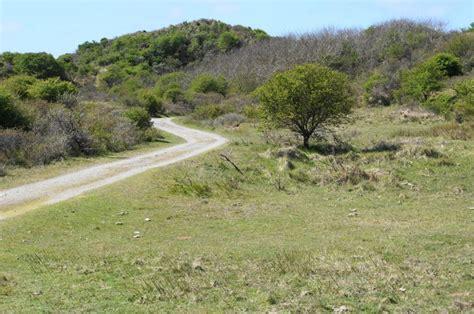 www wandlen de de kennemerduinen een prachtgebied om te wandelen de