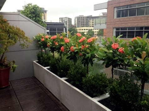 Gartengestaltung Mit Terrasse 2511 21 ideas for privacy screening options other balcony