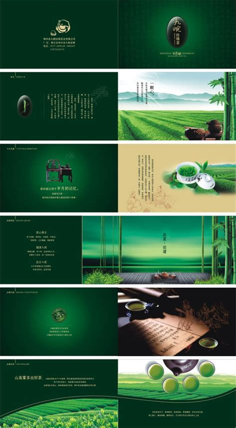 renovation brochure design vector material over millions green tea brochure design vector material over millions