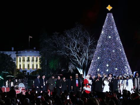 visiting national christmas tree at night every tree worth visiting in the d c area curbed dc
