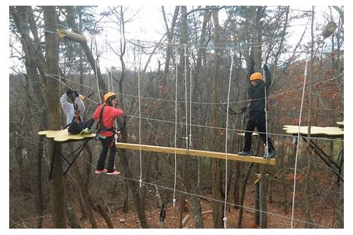 asheville treetops adventure park coupons
