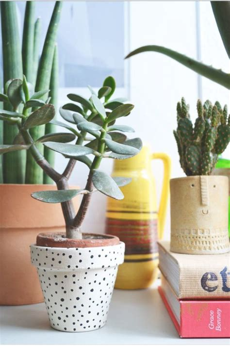 Sweet Home Diy Pflanzen Topfpflanzen Pflanzen Und