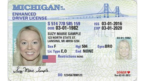 michigan id card template lose your id replacement options exist for vital