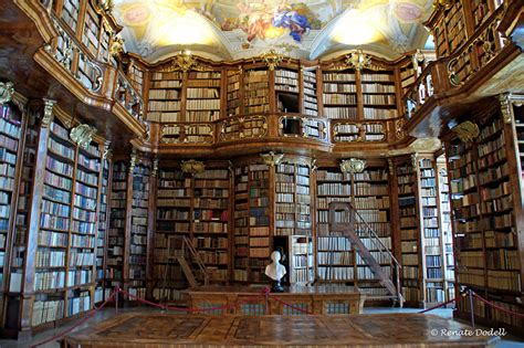 libraries pictures 25 of the most majestic libraries in the world bored panda