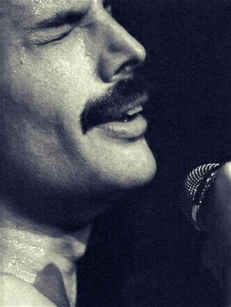 born freddie mercury 416 best queen board images on pinterest freddie mercury