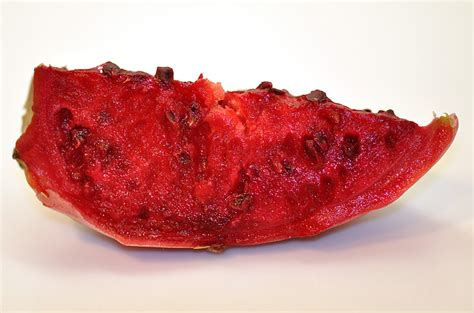 Khepera House Detox by Veggie Cactus Pear In A Toxic World