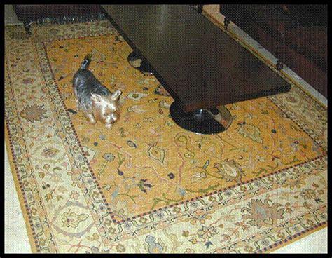 Drop Rug Cleaning by Rug Cleaning Me Rug Cleaning Services Me Home Design Ideas Carpet Cleaners Me Carpet