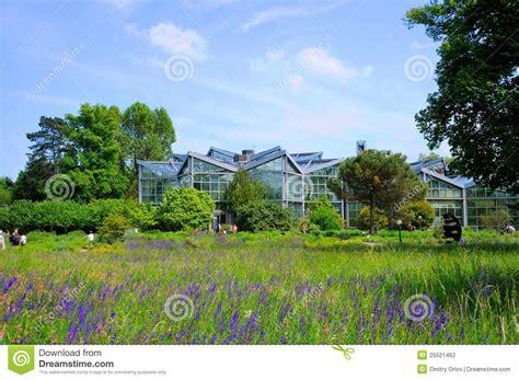 Garten Fräsen by Nature Of Palmen Garten Frankfurt Am Hessen Germany Stock Photography Image 25521462