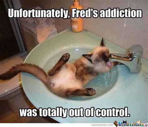 Meme Addiction - addiction memes best collection of funny addiction pictures