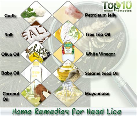 home remedies for lice top 10 home remedies
