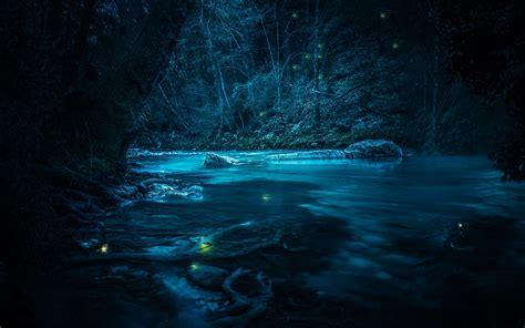 wallpaper river stream fairies night forest