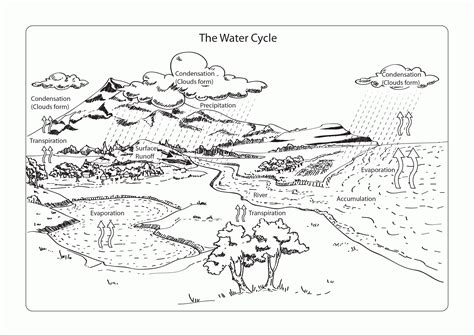 rain cycle coloring page coloring page water cycle coloring home