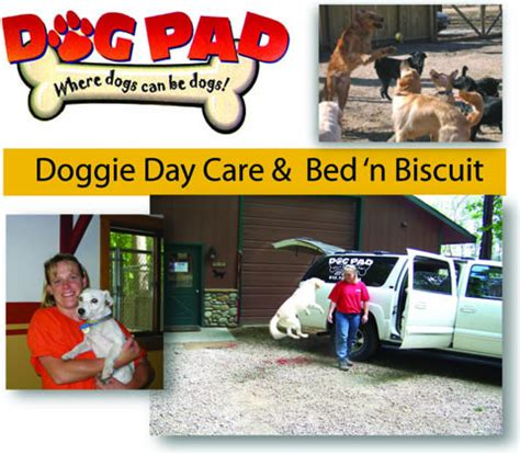 bed n biscuit bed n biscuit 28 images beds n biscuits 12 fotos 19 beitr 228 ge tierpension bed