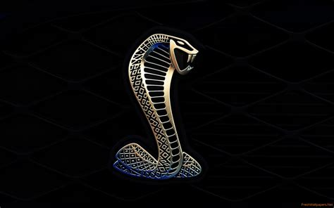 shelby mustang logo image gallery shelby logo
