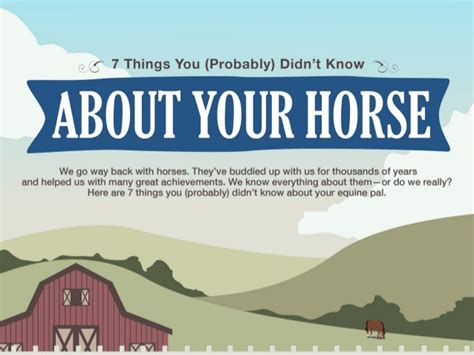 20 things you didn t know about your favorite classic hollywood 7 things you probably didn t know about your horse