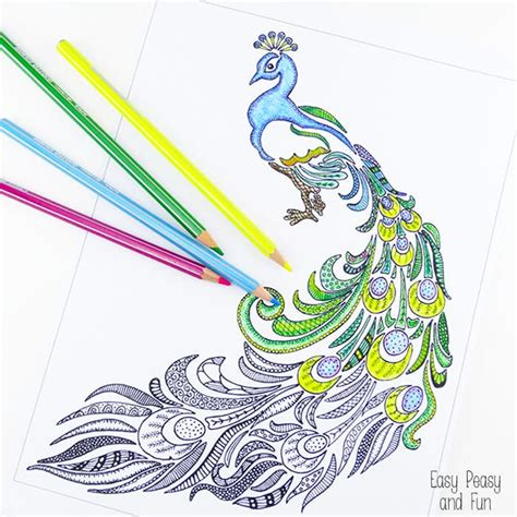 simple peacock coloring page free coloring pages of easy peacock