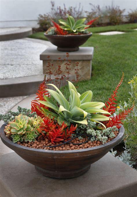 front yard planter ideas singing gardens san diego s landscape and garden designer