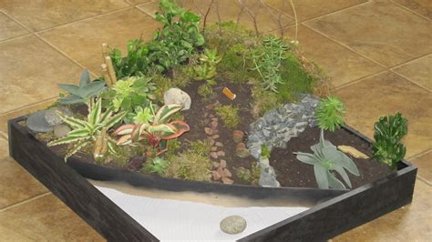 making a zen garden 1000 images about zen on pinterest baby dinosaurs