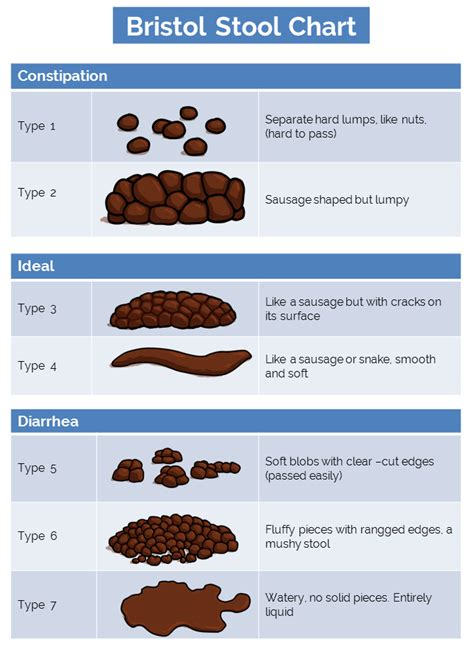 Bristol Stool Chart For by How Does Food Move Through The Motility Defined
