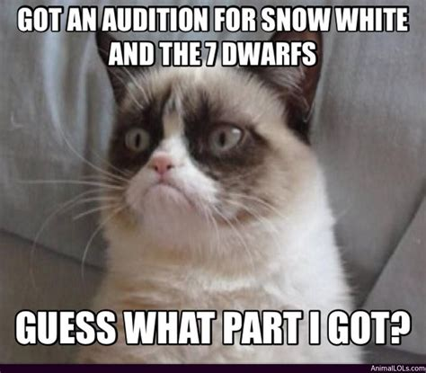 Grumpy Cat Snow Meme - grumpy from snow white quotes quotesgram