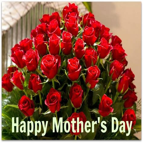 Mothers Day Roses by Images For Gt Happy Mothers Day Roses S Day