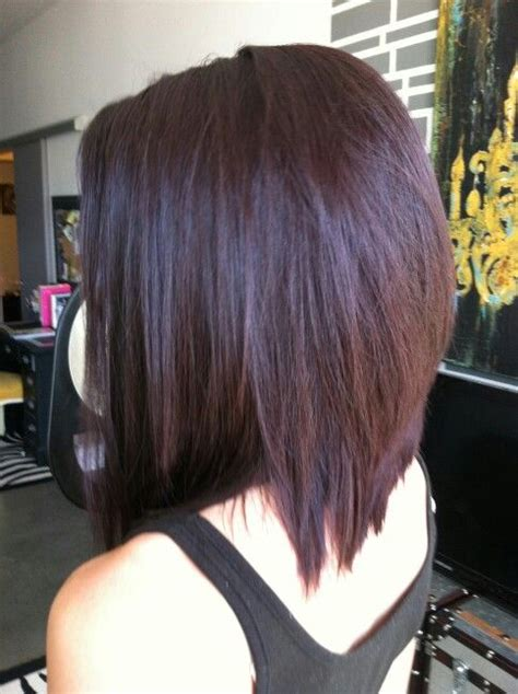 brown plum hair color 25 best ideas about plum brown hair on pinterest dark
