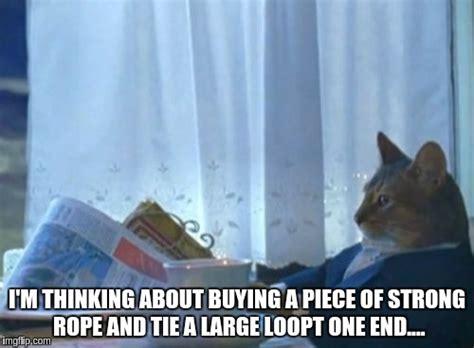 Cat Meme I Should Buy A Boat - i should buy a boat cat meme imgflip
