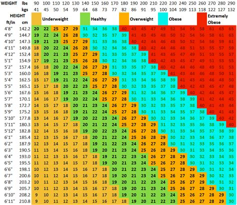 weight loss tracker with bmi dashboard for microsoft excel