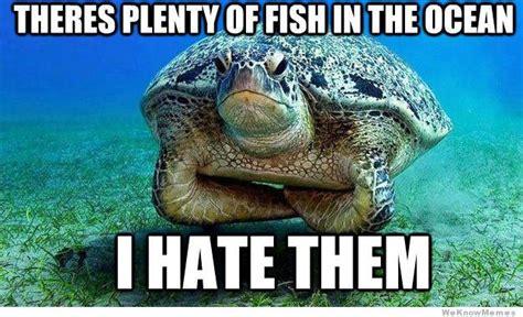 Turtle Meme - grumpy turtle weknowmemes