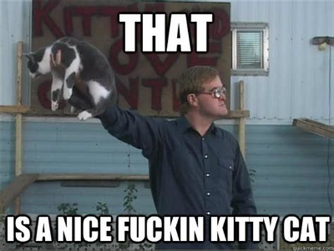 Trailer Park Boys Birthday Meme - that is a nice fuckin kitty cat trailerparkboys kitty