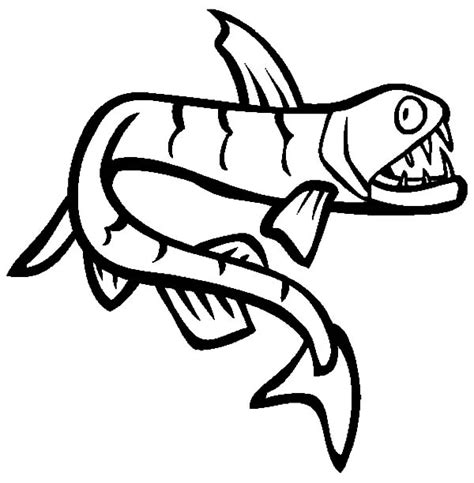 monster fish coloring pages monster fish coloring pages monster fish coloring pages