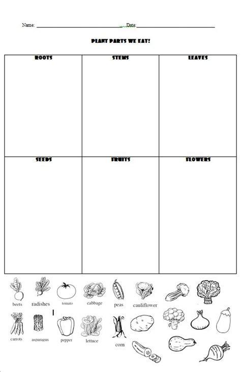 plants we eat worksheet worksheets for all and