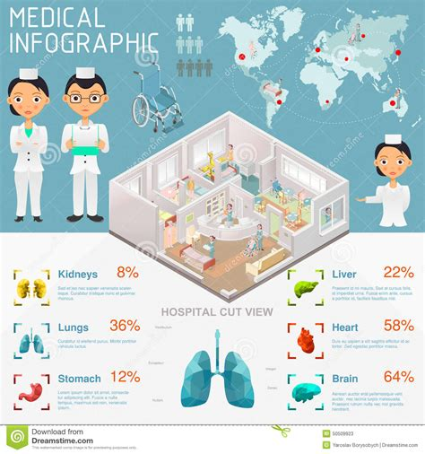 House Building Plans And Prices medical infographic stock vector image 50509923