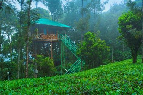 dreamcatcher munnar dream catcher plantation resort 39 4 6 updated
