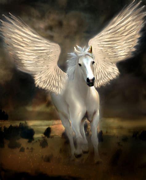 imagenes de unicornios y caballos banco de im 225 genes para ver disfrutar y compartir