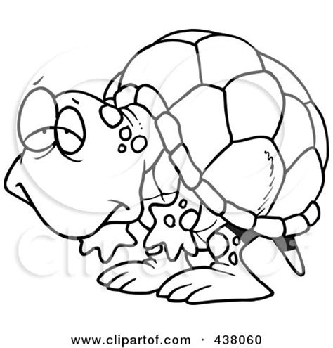 pattern geography exles tortoise outline