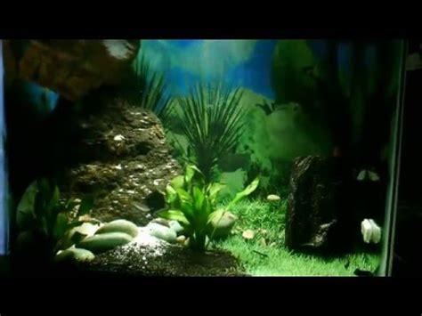 Lu Aquarium Dalam Air aquascape air terjun dalam akuarium budidaya ikan hias