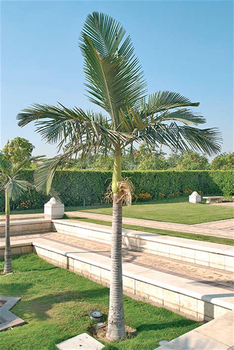 giardini islamici giardini