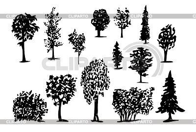 bilder nadelbäume nadelb 195 164 ume stock fotos und vektorgrafiken cliparto