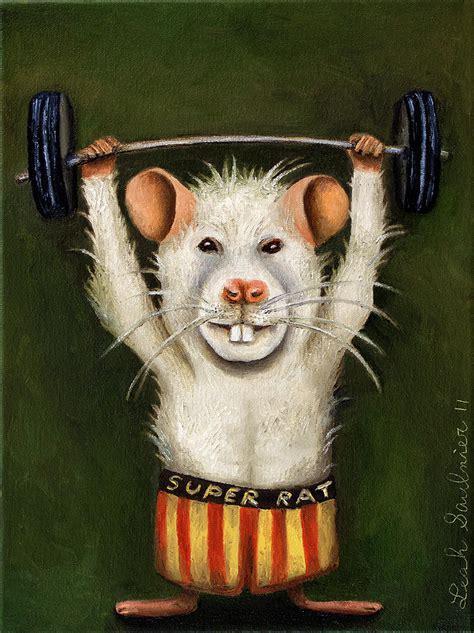 topo in cucina il topo gigante in cucina butac bufale un tanto al chilo
