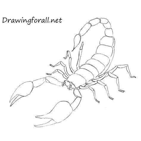draw  scorpion drawingforallnet