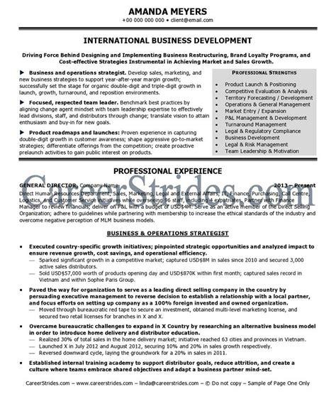 international resume international business resume objective international