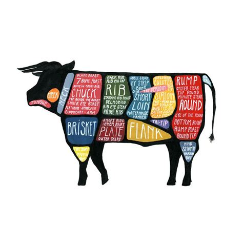 cow cuts diagram butcher diagram beef detailed cuts of beef poster quot use