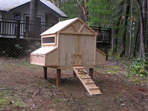 small chicken coop backyard chickens pinterest