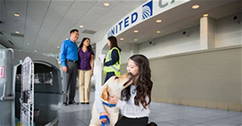 United Airlines Pets In Cabin by Traveling With Pets United Airlines